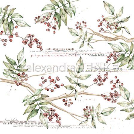 AR_10-939_Alexandra-Renke_branche-baies-rouges_img